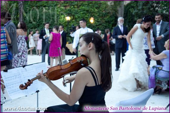 Violinista bodas Madrid
